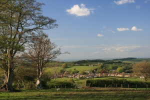 broadwindsor from lewesdon